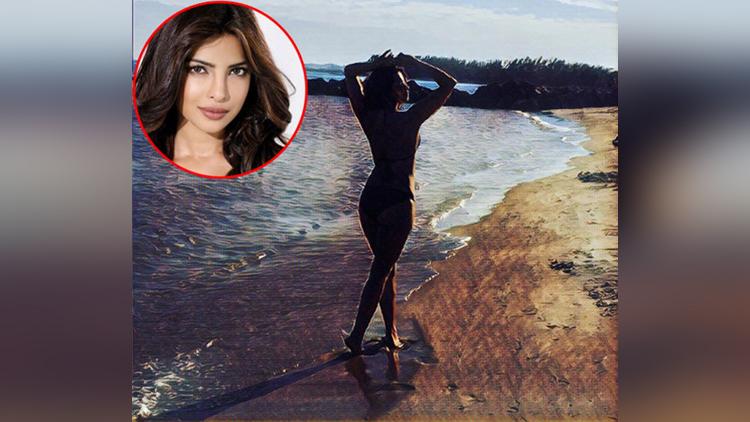 priyanka chopra viral bikini photo