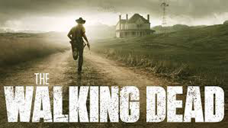 Walking Dead A Must Watch Tv Series-I'm Sure It Keep You All Intact With Your Screens Till The Last Season