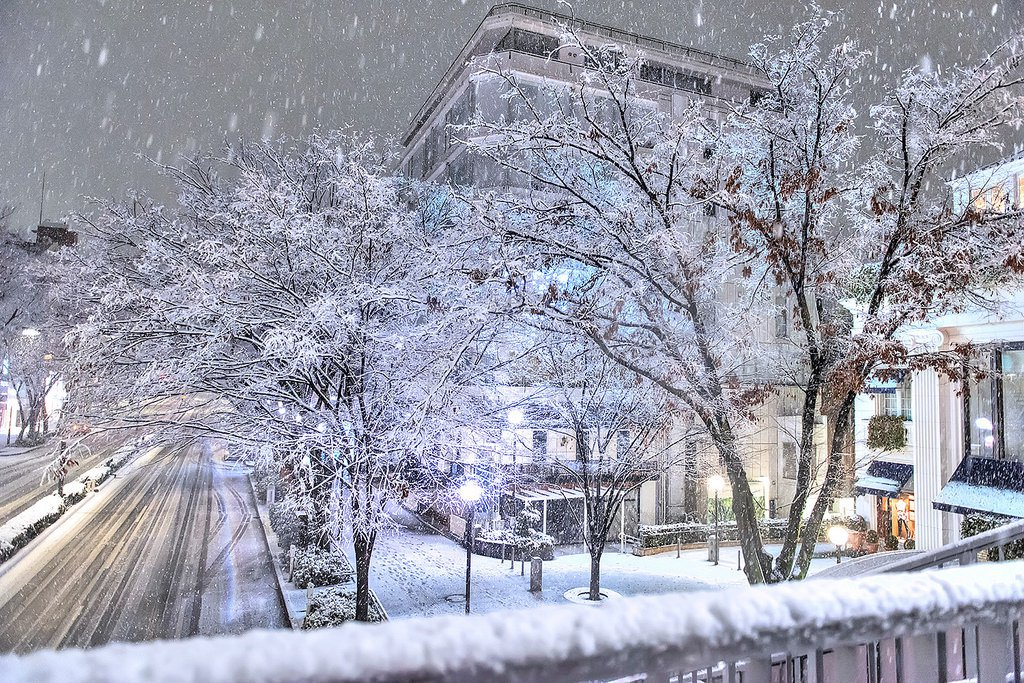 snowfall in Tokyo