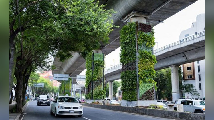 Metro pillars in Garden City Bengaluru might soon have vertical gardens attached to them