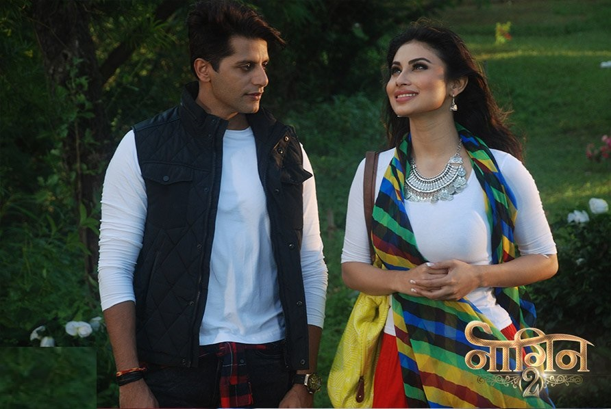 income of tv star cast of naagin