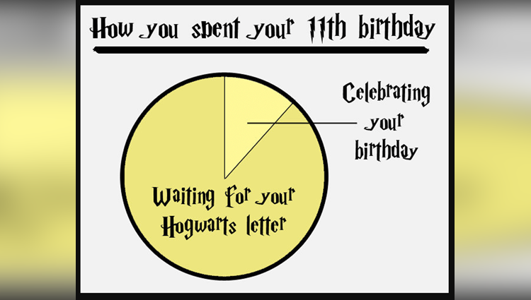 Only Harry Potter Fans Will Relate To These Charts