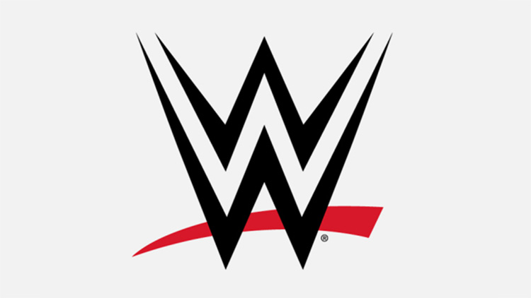 earnings of your favourite wwe star