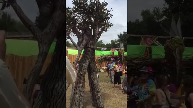 Brace Yourself To See This Amazing Tree Man