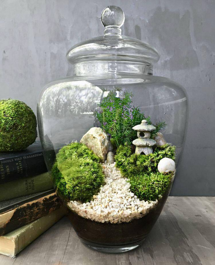 When it was put in a glass jar nature was something sight, Look Pictures