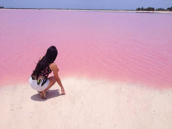 pink sea in mexico
