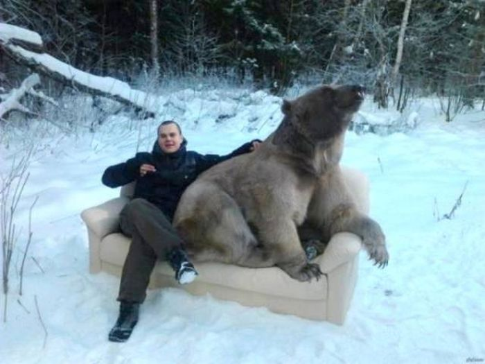 15 funny russian pictures