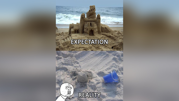funny pictures of reality vs expectations