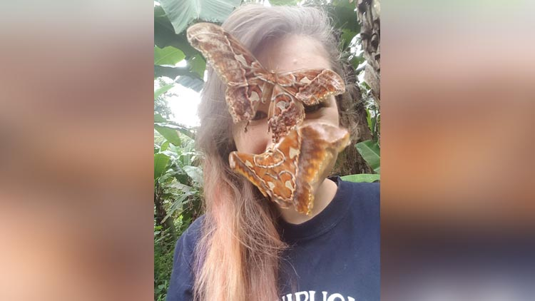 people clicking pictures with bugs for facebug challenge