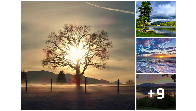 amazing pictures of nature