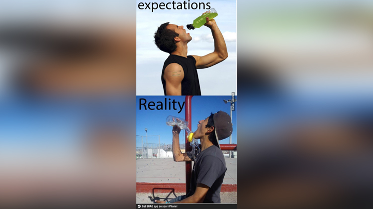 funny pictures of reality vs expectation