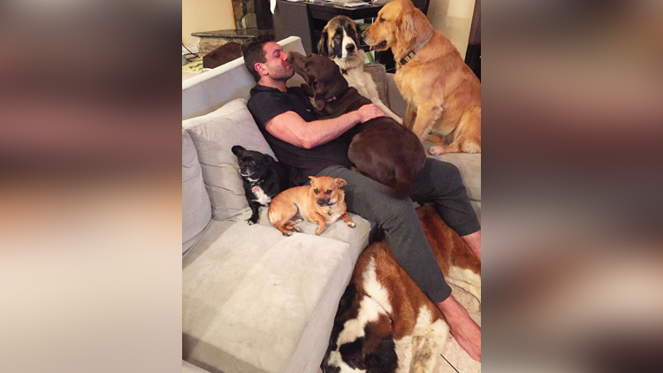 Lee Asher Has A Pet Family And Has Rescued Many Animals