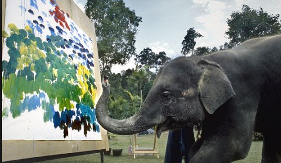 Elephants paint using their trunks feet and special brushes