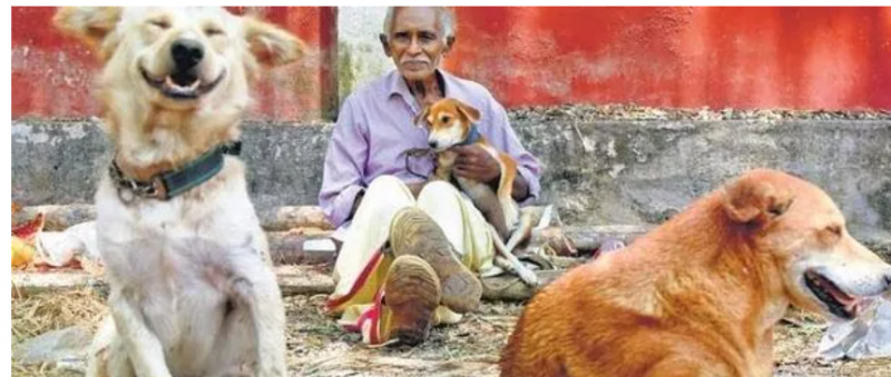 70 Yr Old Man In Kerala Provides Ray Of Hope For Stray dogs