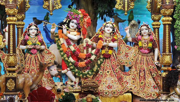 janmashtami celebration at different places