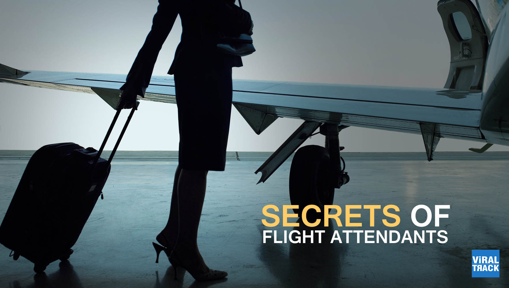 secrets of flight attendants