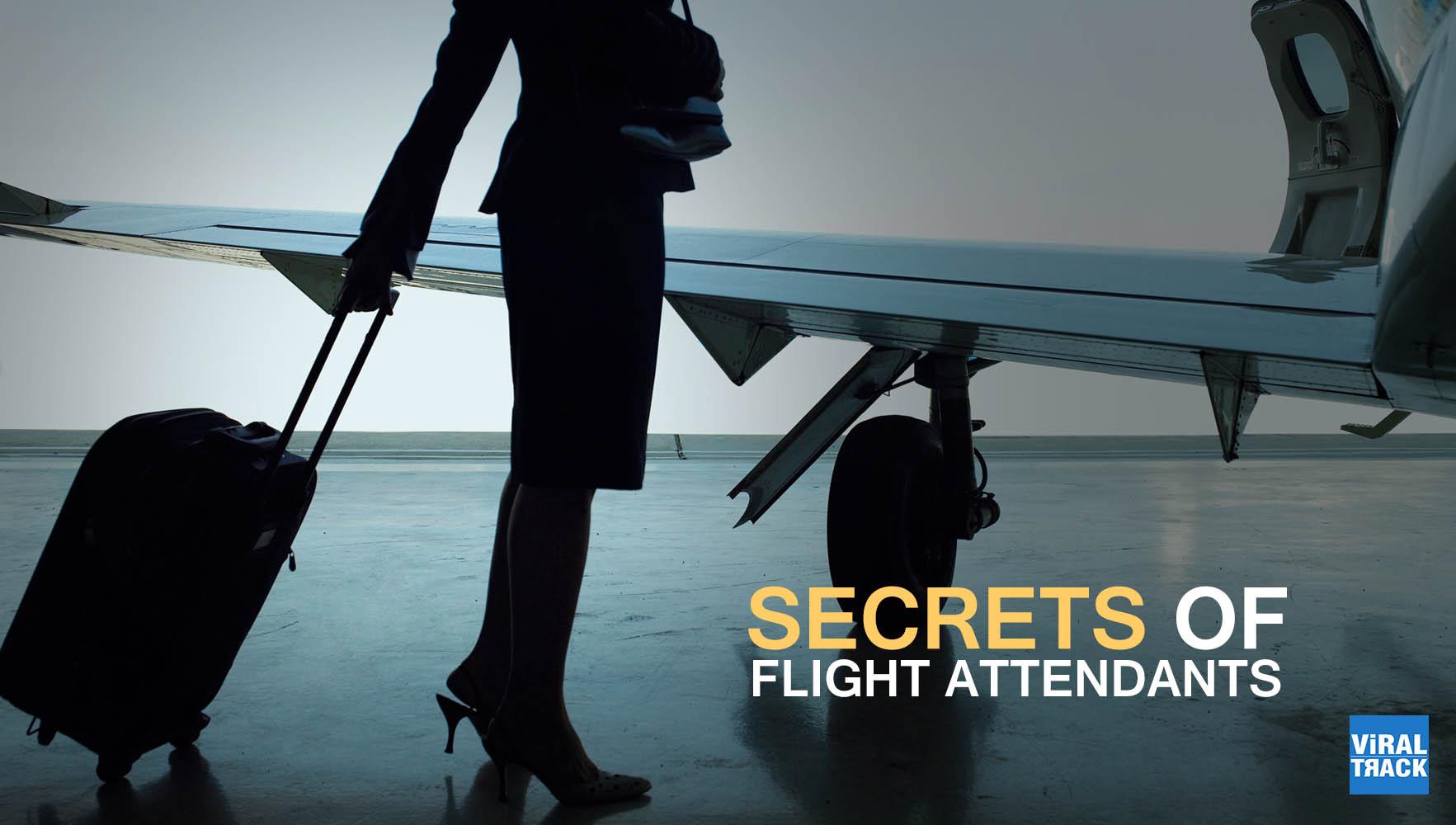 secrets of flight attendants