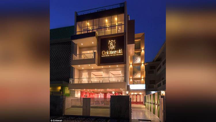 indias first dog hotel in gurugram