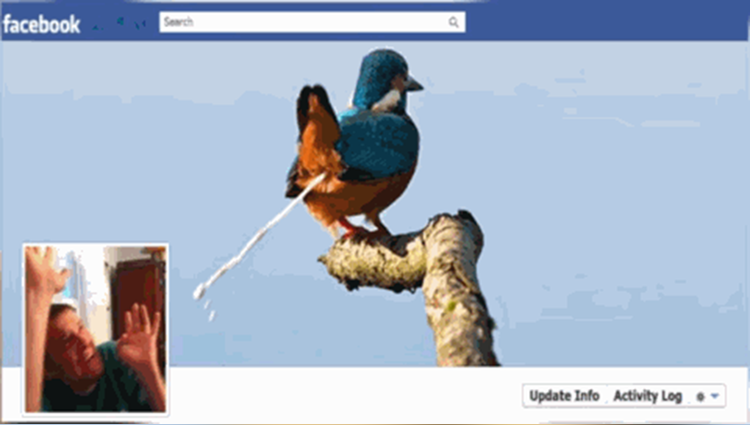 creative facebook dp and cover photo you have not seen before