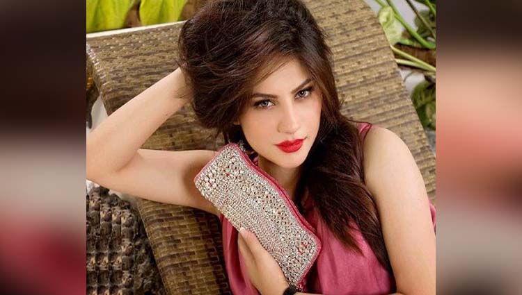 Neelam Muneer hot and sexy photos viral