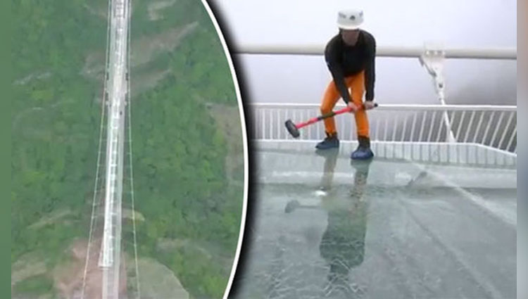 world longest and highest glass bottom bridge to open in china