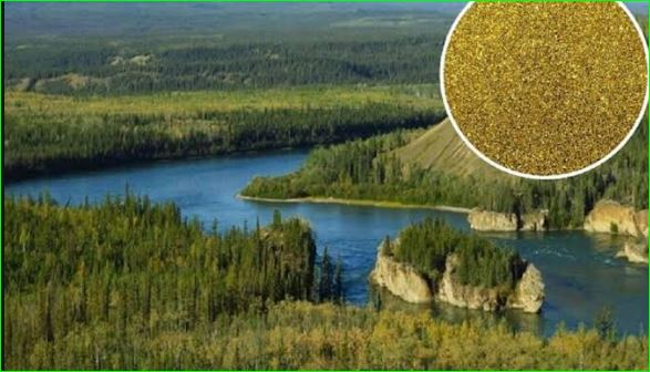 Klondike River In Which Gold Flows