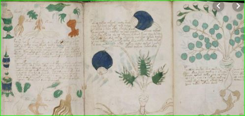 Worlds Most Mysterious Book Voynich Manuscript Language