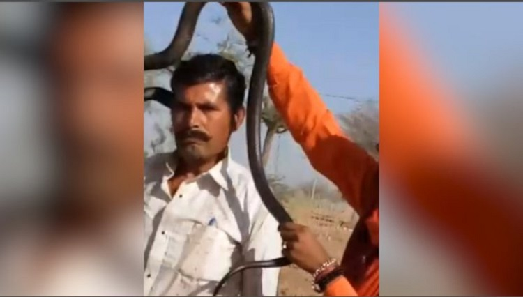man posing for a photo with a deadly cobra