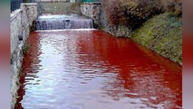 river turned bloody in a night