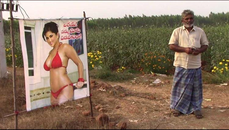 To ward off evil eye Andhra farmer puts up Sunny Leone poster to keep crop safe