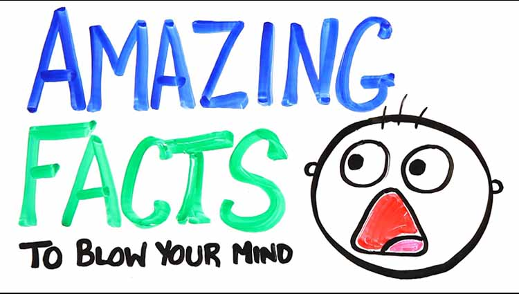 Amazing Facts You Probably Didn't Know That Will Blow Your Mind