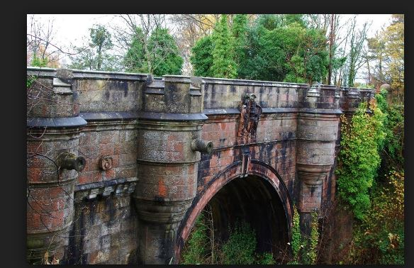 Dog suicide bridge Dogs jump to death off Overtoun Bridge