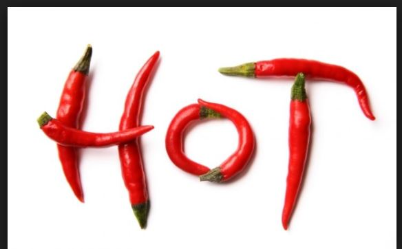 Why chillies are hot
