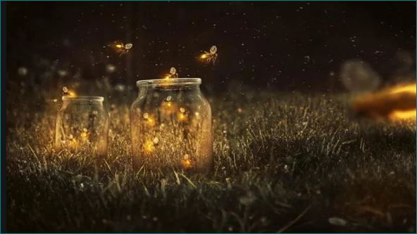 What Makes Fireflies Light Up