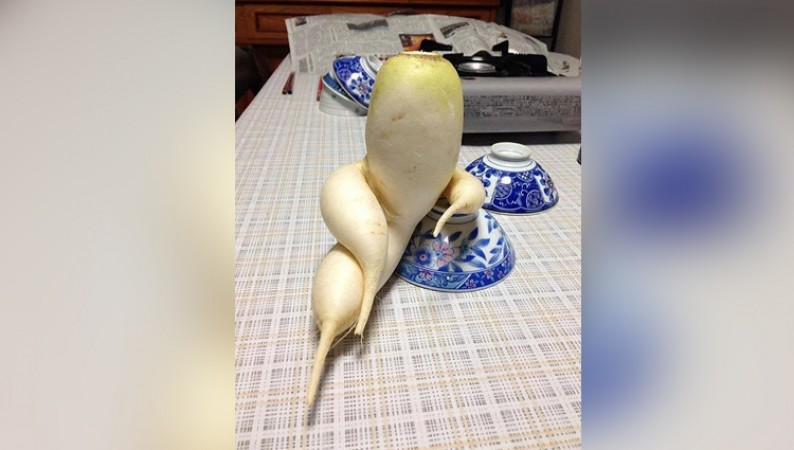 Funny Shaped Fruits And Vegetables