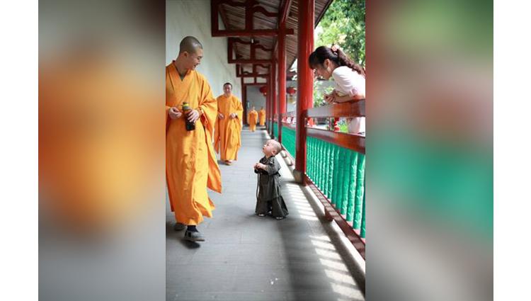 supercute baby monk