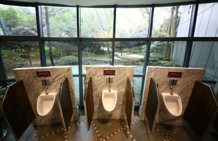 5 star toilets in china