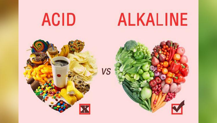 Some alkaline foods that can avert fatness naturally