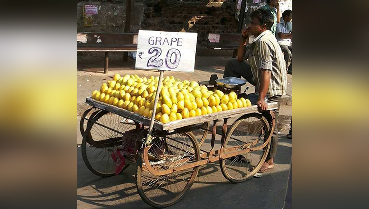 Photos From India That Made Everyone Laugh