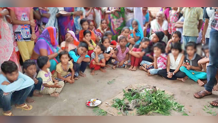 people from several villages reached the thirteenth in langur