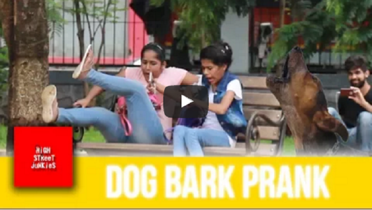 FAKE DOG BARK SCARE PRANK AWESOME REACTIONS PRANKS IN INDIA