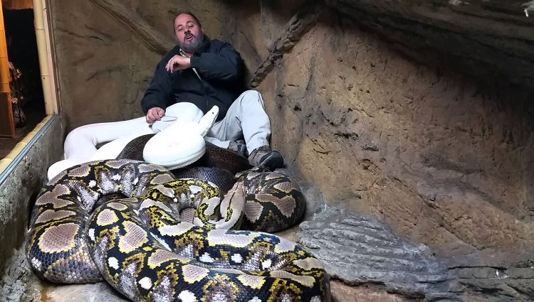 crazy jay brewer livingthedream with pythons