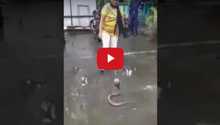 Brave Girl In India Girl catch Snake in india