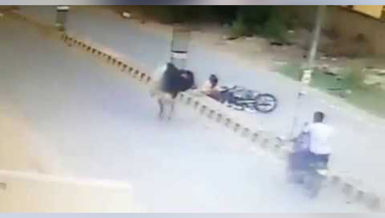 Bull Attack On Bike Rider