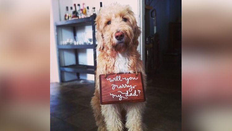 No One Can Reject Your Proposal If You Propose With These Cute Ways