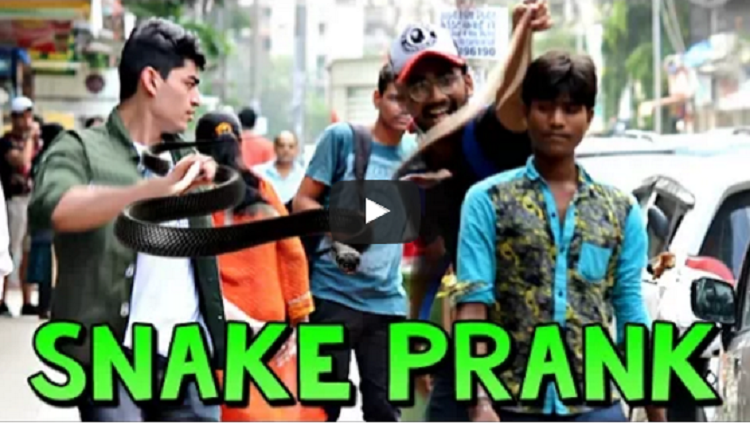 Fake Snake Prank on People Scary Snake Pranks Prank in India