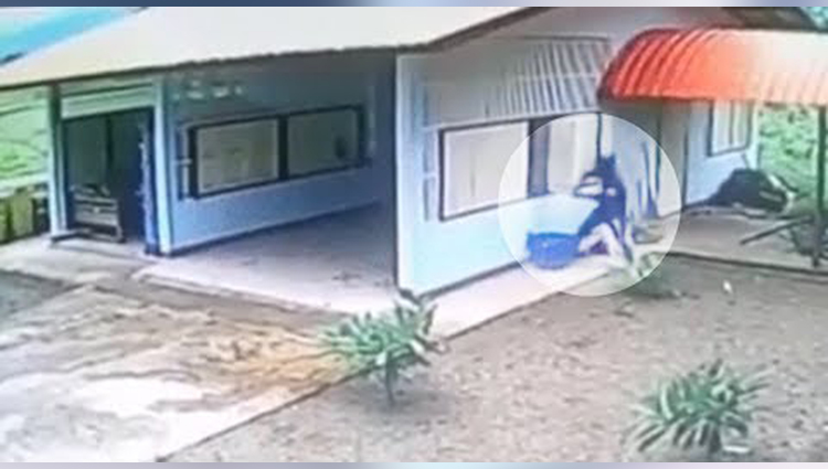 Burglar Climbs In Through Window Of A Garage