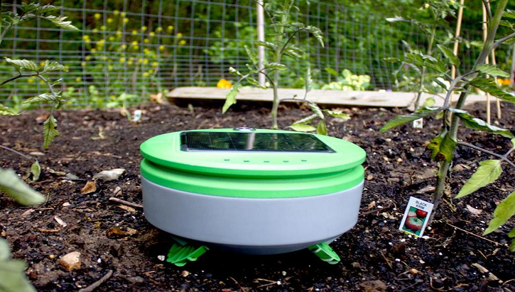 This Small Weeding Robot Will Keep Your Garden Free From Weeds