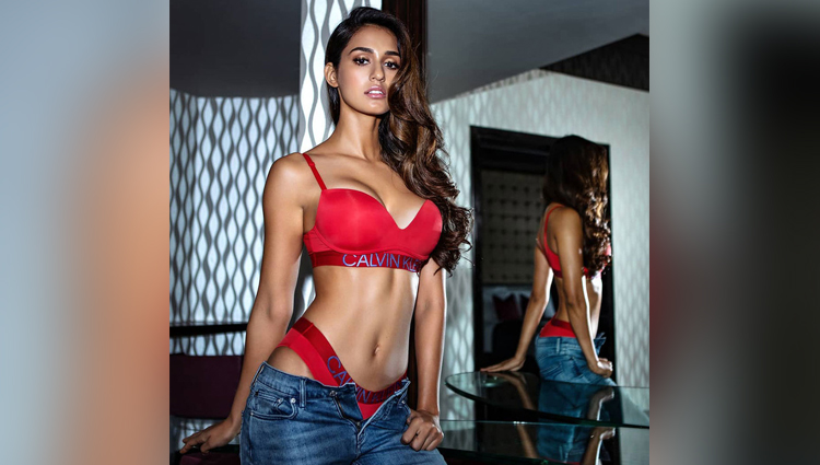 disha patani bold photos birthday bollywood actress disha patani photos