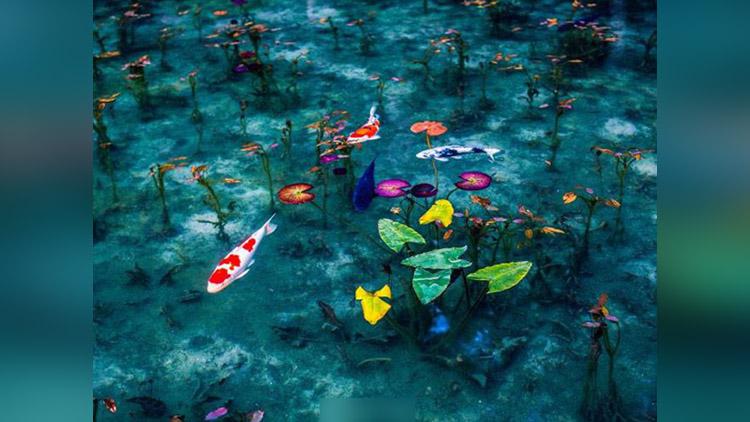 Japan's beautiful season pictures